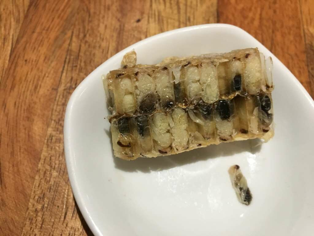 Bees Larvae for Soup, Bugs cafe, Siem Reap, Cambodia