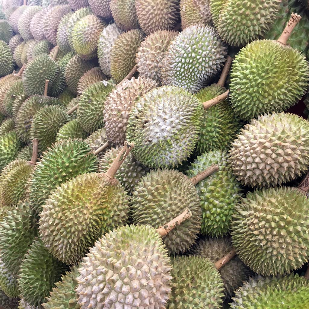 Durian-fruit-Singapore-travel Bizarre Foods