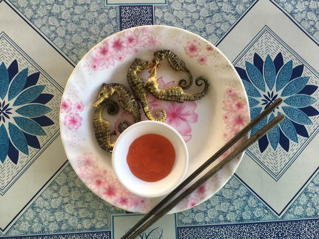 Fried Seahorse, Ham Ninh Fishing Village, Phu Quoc, Vietnam