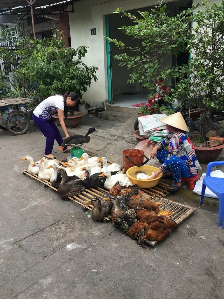 Local Village Market, Vietnam