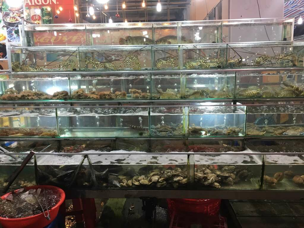 Seafood Display at Phu Quoc Night Market, Vietnam