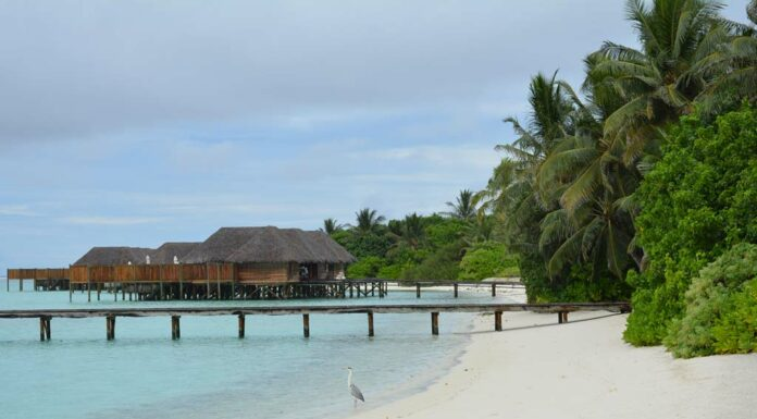 stay-at-maldives